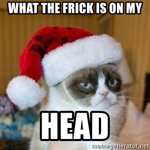Grumpy Cat Santa Hat - what the Frick is on my Head