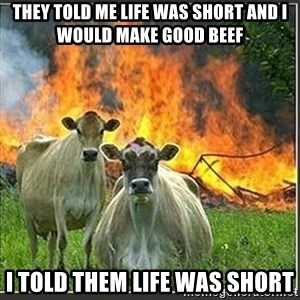 Evil Cows - They told me life was short and I would make good beef I told them life was short