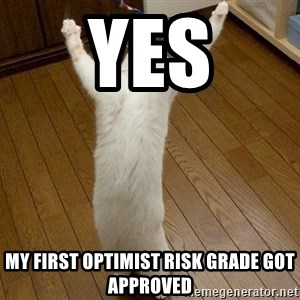praise the lord cat - yes my first optimist risk grade got approved