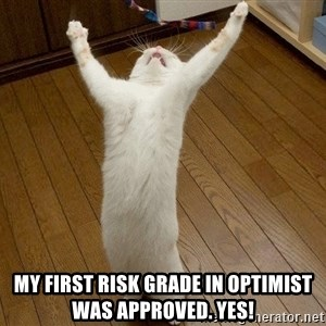 praise the lord cat - my first risk grade in optimist was approved. yes!