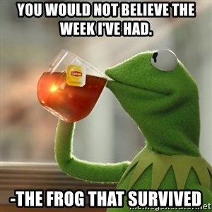 Kermit The Frog Drinking Tea - You would not believe the week I've had. -The frog that survived