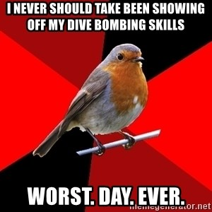 Retail Robin - I never should take been showing off my dive bombing skills worst. day. ever.