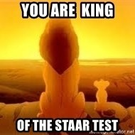 The Lion King - You are  King of the STAAR test