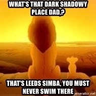 The Lion King - WHAT'S THAT DARK SHADOWY PLACE DAD,? THAT'S LEEDS SIMBA, YOU MUST NEVER SWIM THERE