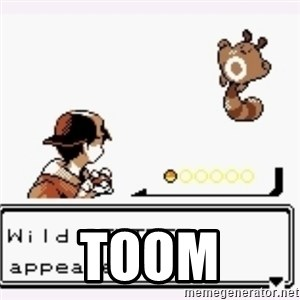 a wild pokemon appeared - Toom
