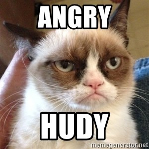 Mr angry cat - angry hudy