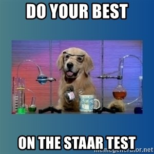 Chemistry Dog - Do your best on the Staar test