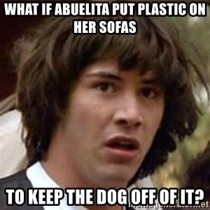 Conspiracy Keanu - What if abuelita put plastic on her sofas to keep the dog off of it?