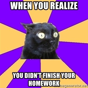 Anxiety Cat - when you realize  you didn't finish your homework