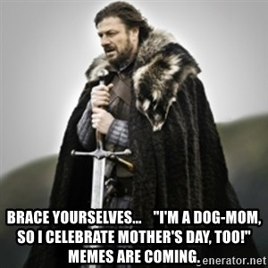 "Brace yourselves. - Brace yourselves...    ""I'm a dog-mom, so I celebrate Mother's day, too!"" memes are coming."
