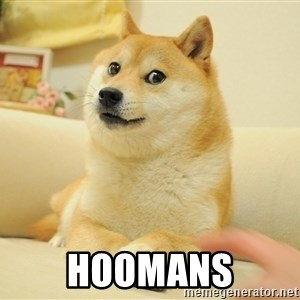 so doge - Hoomans