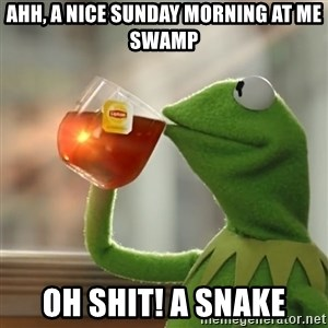 Kermit The Frog Drinking Tea - ahh, a nice sunday morning at me swamp oh shit! a snake