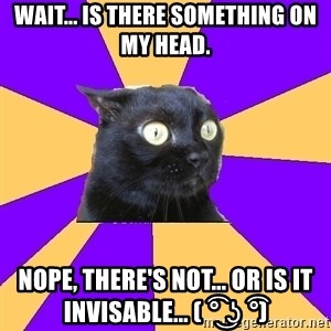 Anxiety Cat - Wait... is there something on my head. Nope, there's not... or is it invisable... ( ͡° ͜ʖ ͡°)