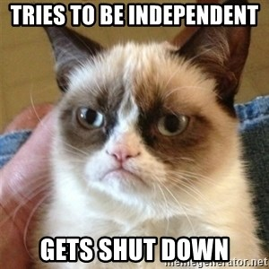 Grumpy Cat  - tries to be independent  gets shut down