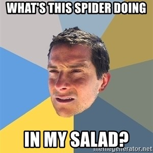 Bear Grylls - what's this spider doing in my salad?