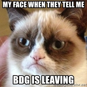 Angry Cat Meme - My face when they tell me BdG is leaving