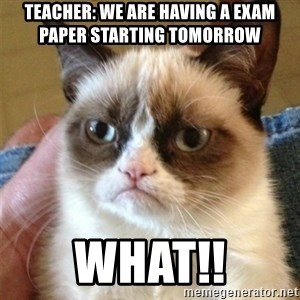Grumpy Cat  - Teacher: we are having a exam paper starting tomorrow  WHAT!!