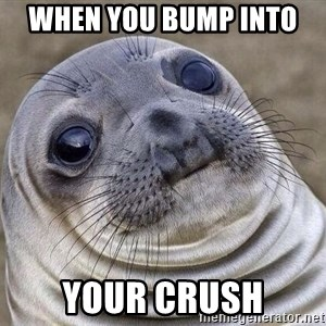 Awkward Seal - when you bump into  your crush