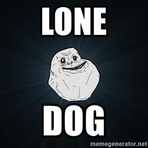 Forever Alone - lone dog
