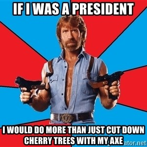 Chuck Norris  - if i was a president I would do more than just cut down cherry trees with my axe