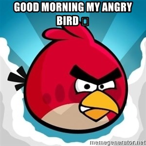 Angry Bird - Good Morning My Angry Bird 😘