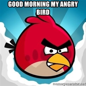 Angry Bird - Good Morning My Angry Bird