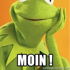 Kermit the frog - MOIN !