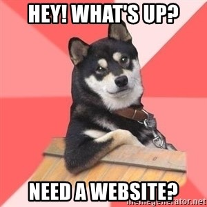 Cool Dog - Hey! What's up? Need a website?
