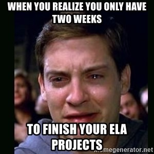 crying peter parker - When you realize you only have two weeks to finish your ELA Projects