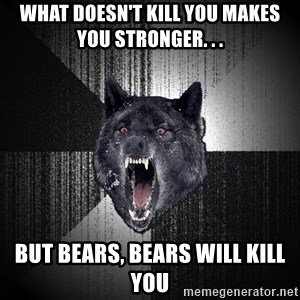 Insanity Wolf - What Doesn't kill you makes you stronger. . . But bears, bears will kill you