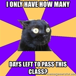 Anxiety Cat - I only have how many days left to pass this class?