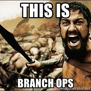 This Is Sparta Meme - THIS IS BRANCH OPS