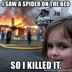 Disaster Girl - I saw a spider on the bed so i killed it.