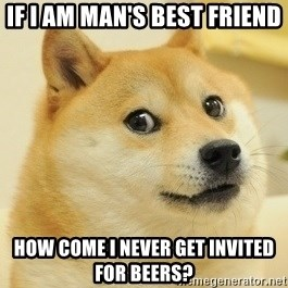 Dogeeeee - If I am man's best friend How come I never get invited for beers?