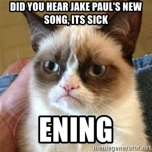 Grumpy Cat  - Did you hear Jake Paul's new song, its sick ening