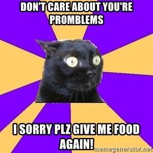 Anxiety Cat - don't care about you're promblems I SORRY PLZ GIVE ME FOOD AGAIN!