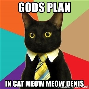 Business Cat - GODS PLAN IN CAT MEOW MEOW DENIS