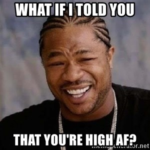 Yo Dawg - What if I told you that you're high AF?
