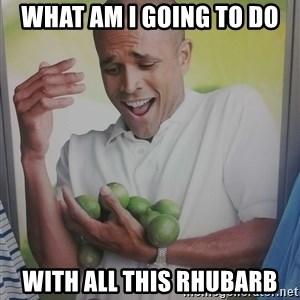 Limes Guy - what am I going to do  with all this rhubarb