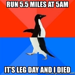 Socially Awesome Awkward Penguin - Run 5.5 miles at 5am It's leg day and I died