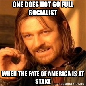 One Does Not Simply - One does not go Full Socialist when the fate of America is at stake