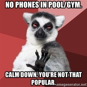 Chill Out Lemur - No Phones in Pool/Gym. Calm down, you're not that popular.