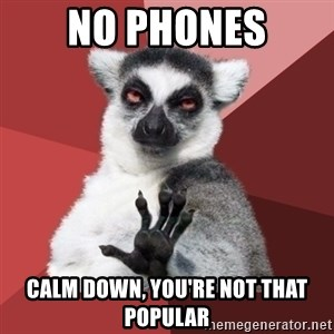 Chill Out Lemur - No phones calm down, you're not that popular