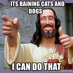 buddy jesus - ¨its raining cats and dogs¨ I can do that