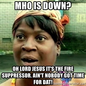 oh lord jesus it's a fire! - MHO is down? Oh lord Jesus it's the fire suppressor. Ain't nobody got time for dat!