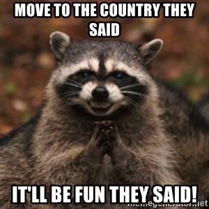 evil raccoon - Move to the country They said It'll be fun they said!