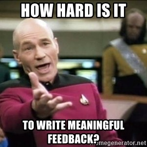 Why the fuck - How hard is it  To write meaningful feedback?
