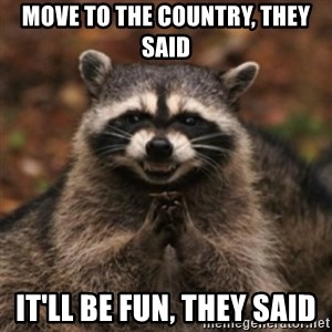 evil raccoon - Move to the country, They said It'll be fun, they said