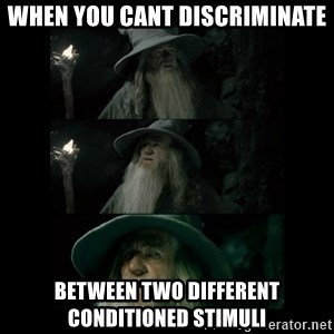 Confused Gandalf - When you cant discriminate between two different conditioned stimuli