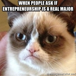 Angry Cat Meme - when people ask if entrepreneurship is a real major
